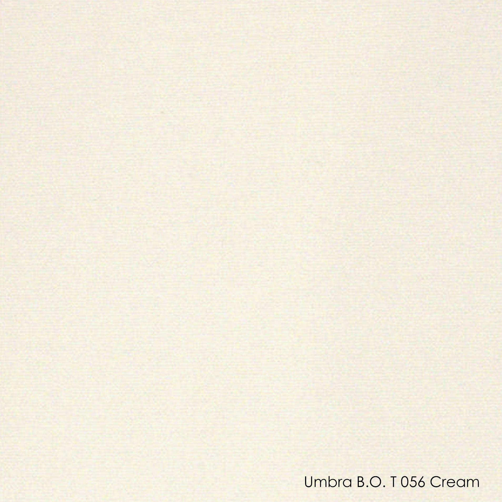 Тканевые ролеты закрытого типа Besta Uni 309